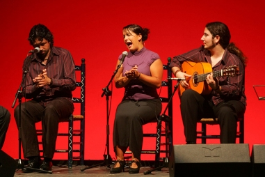 Bailando flamenco: Sueños